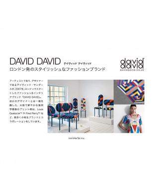 ピンク ペンケース/DAVID DAVID見る