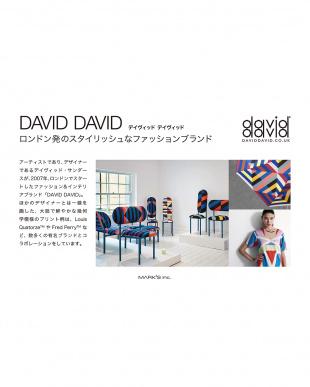 ホワイト  ペンケース/DAVID DAVID見る