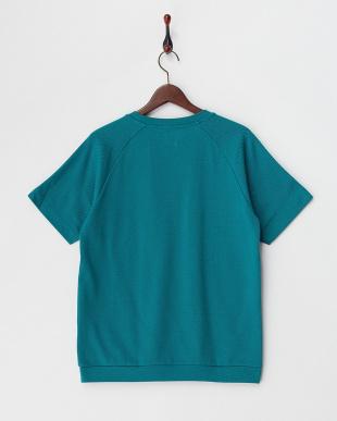 グリーン 鹿の子ラグランスリーブTシャツ見る