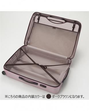 ホライソングリーン  ラグーナライトF スーツケース46L見る