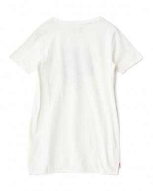 ホワイト  ホイットマンリバー 半袖Tシャツ見る