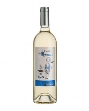 南仏 キュートな白ワイン2本セット見る