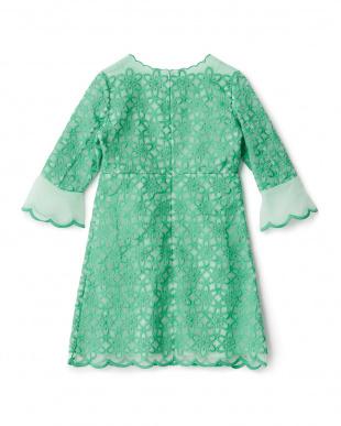 グリーン  フラワー刺繍オーガンジードレス見る