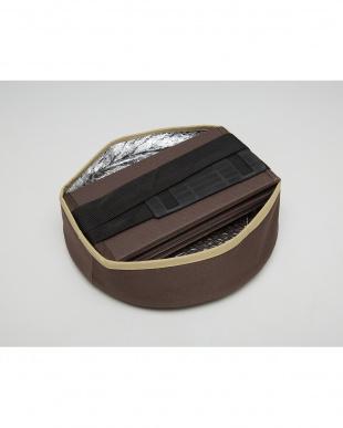 ブラウン  座クールボックス コンパクト|Seiei見る
