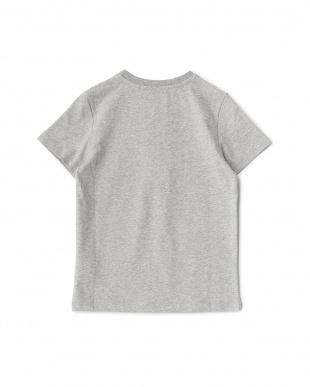 グレー ビッグC ブルドッグ Tシャツ見る