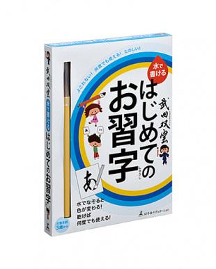 武田双雲 水で書ける はじめてのお習字見る