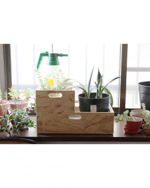 ホワイト  GENERAL BOTANICAL TOOL BOX S見る