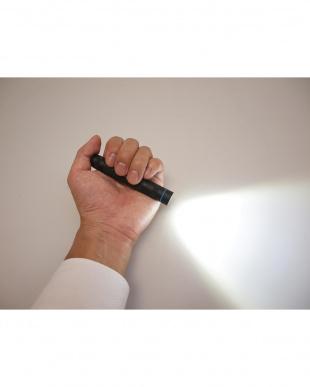 LEDライト(PL30)見る