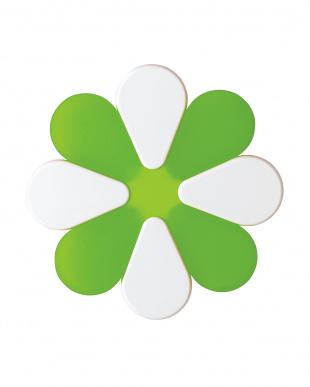 グリーン LATINA ポットマット 2P見る