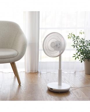 ホワイト siroca サーキュレーター扇風機見る