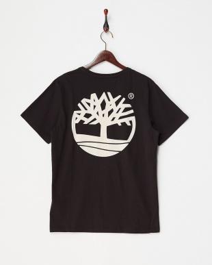 Black  AF BK GRAPHIC TREE T SMU Tシャツ見る