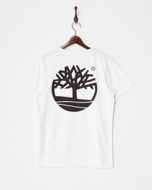 White  AF BK GRAPHIC TREE T SMU Tシャツ見る