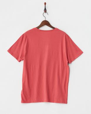 ピンク  SS BASIC GES LA LOGO CREW TEE見る