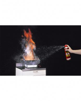 エアゾール式簡易消火具 直撃消火|Seiei見る