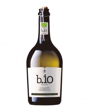ビプントイオ カタラット・シャルドネ/ビプントイオ ネーロ・ダーヴォラ・カベルネ BIOワイン2本セット見る