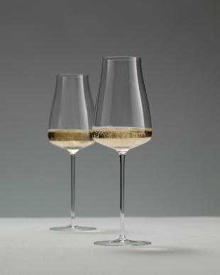 WINE CLASSICS シャンパングラスペアセット見る