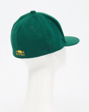 GREEN×YELLOW刺繍 BO/S CoastLNCPSP見る