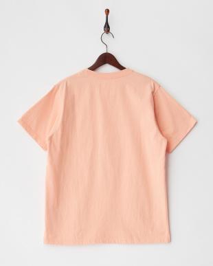 オレンジ  PELHAM CREW ST ベーシックポケットTシャツ見る