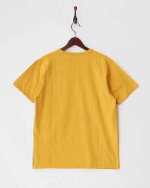 ゴールド  VINTAGE PK ST Vintage Surf ベーシックポケットTシャツ見る