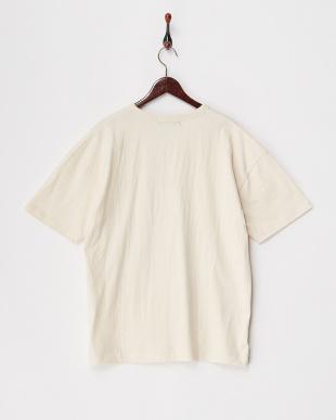 オフホワイト  USAコットンビッグTシャツ見る