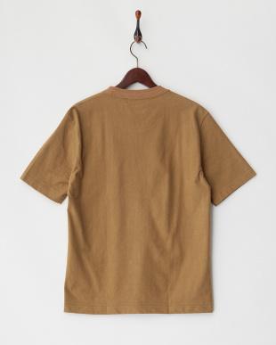 ブラウン  天竺Tシャツ見る