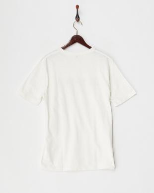 ホワイト スラブロゴ天竺Tシャツ見る