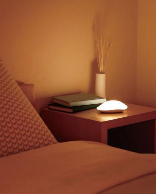ブラウン  LED枕もとライト 懐中電灯機能付き見る