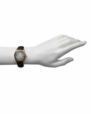 ゴールド/ブラック  ダイヤ付き ソーラー電波腕時計 085 WOMEN見る