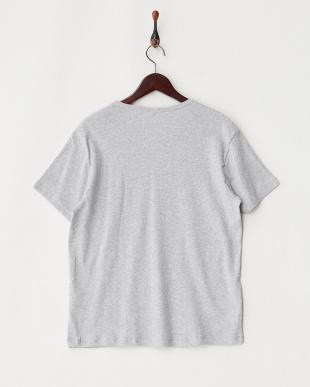 ライトグレー  エコテックス VネックTシャツ見る