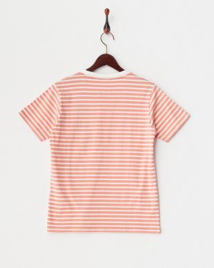 ピンク  半袖ボーダーTシャツ|WOMEN見る