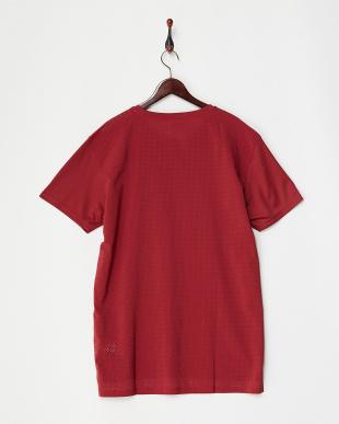 TIBETAN RED  エナジー キャットTシャツ見る