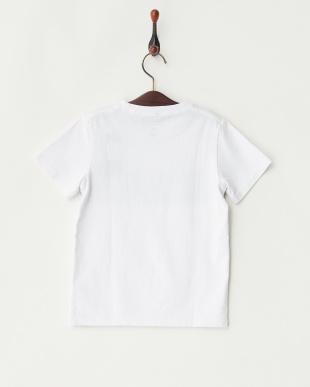 WHT  PALMSHADE LOGO ST KIDS Tシャツ見る