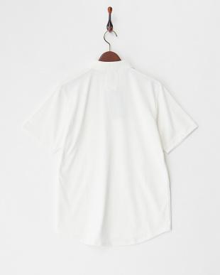 ホワイト  デザインカラーポロシャツ見る