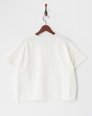 ホワイト ハイツイストコットンニットTシャツ見る
