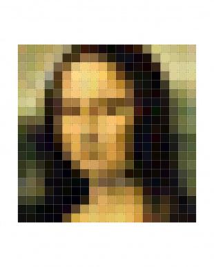 IXXI ウォールピクチャーピクセルモナリザ(200×200cm)見る