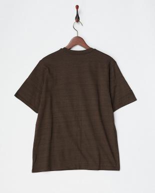 ブラウン  コットンデラベ天竺Tシャツ見る