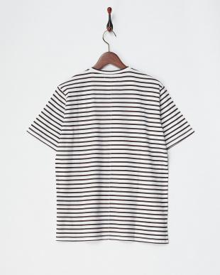 ブラウン/ホワイト コットンデラベ天竺ボーダーTシャツ|MEN見る