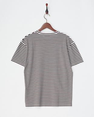 ブラウン/ホワイト コットン天竺ボーダーTシャツ|MEN見る