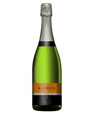 フランス・スペイン スパークリングワイン飲み比べ4本セット見る