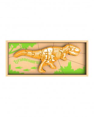 スケルトンパズル ティラノサウルス見る