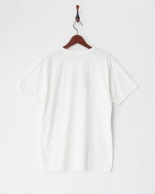 WHT2 THE MOUNTAINWAVE WHITE ST グラフィックロゴTシャツ見る