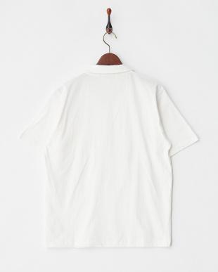 オフホワイト 20/-天竺 オープンカラーシャツ見る