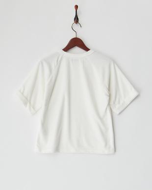 ホワイト  パイルラグラン半袖Tシャツ見る