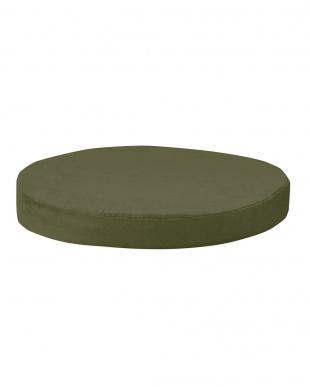 グリーン 低反発クッション 丸形 薄タイプ 2枚組見る
