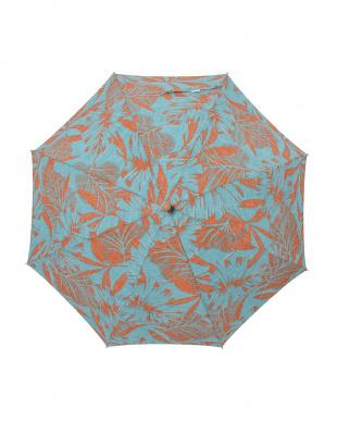 12 reyn spooner 晴雨兼用長傘見る
