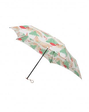 サファリ グリーン 軽量折りたたみ傘(デザイン)見る