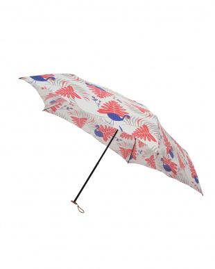 サファリ コラール 軽量折りたたみ傘(デザイン)見る