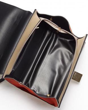 ブラック  WWT  スリーカラーハンドバッグ見る