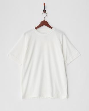 ホワイト ATV-401 鹿の子Tシャツ見る