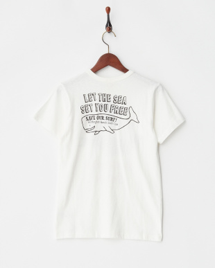 オフホワイト サーフィンキャンプTシャツ見る